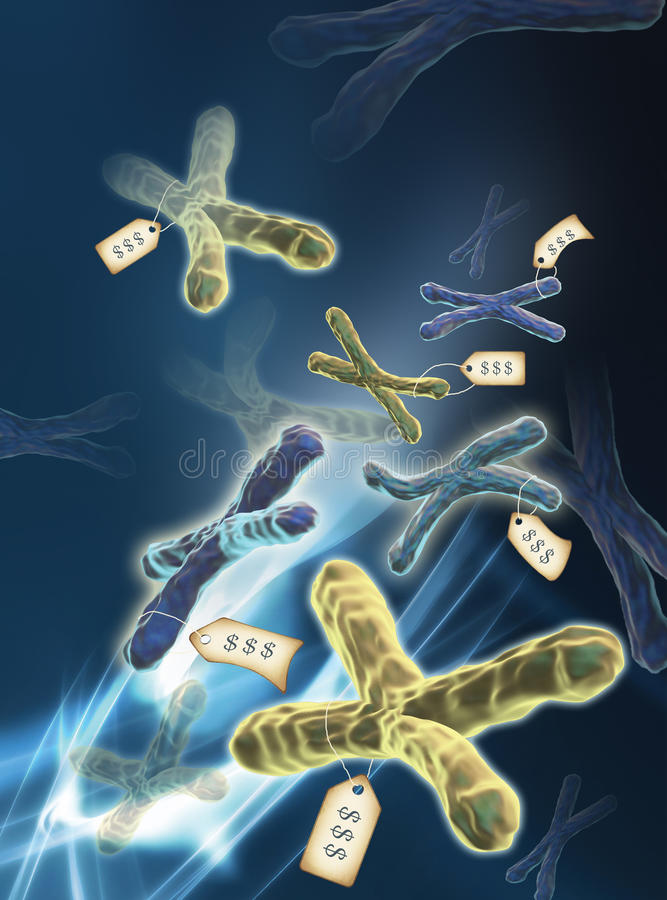 Genomics commercialization. Conceptual computer artwork of genetically modified chromosomes for sale. Chromosomes are composed of deoxyribonucleic acid (DNA) vector illustration