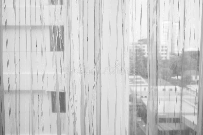 Genomskinlig gardin på fönster royaltyfri bild
