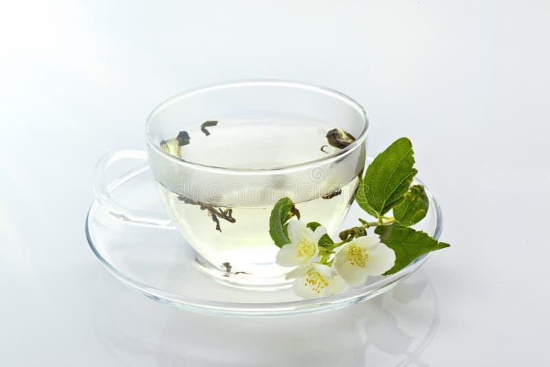 Genomskinlig kopp med grönt te och den nya växt- buketten royaltyfri bild