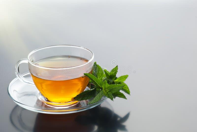 Genomskinlig kopp med grönt te och den nya växt- buketten arkivfoto