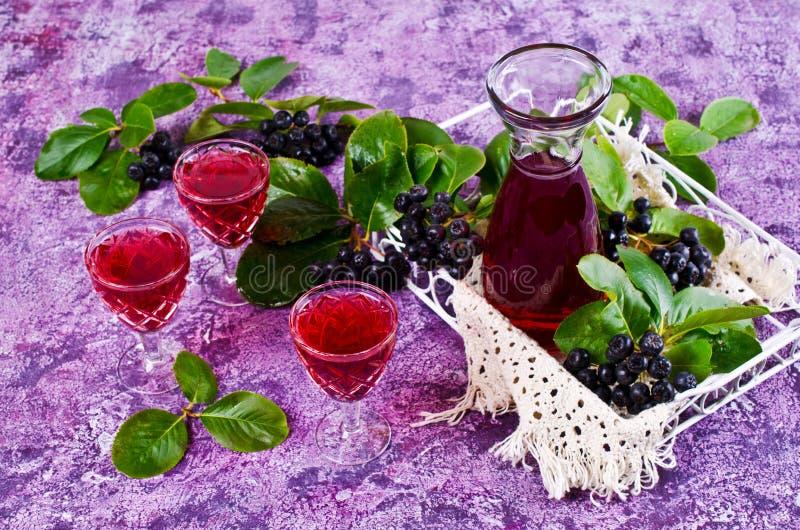 Download Genomskinlig röd drink arkivfoto. Bild av beverly, fruktsaft - 76702146