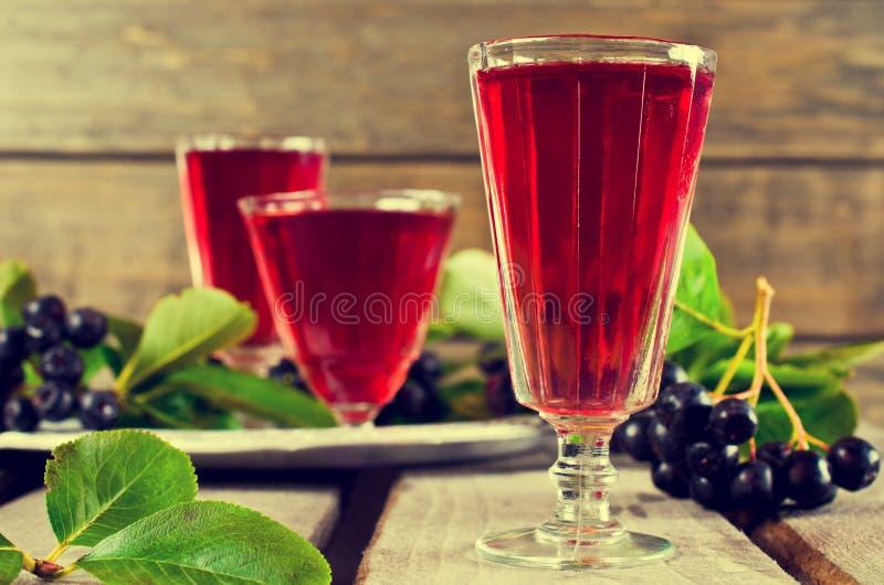 Download Genomskinlig röd drink arkivfoto. Bild av chokeberry - 76702392