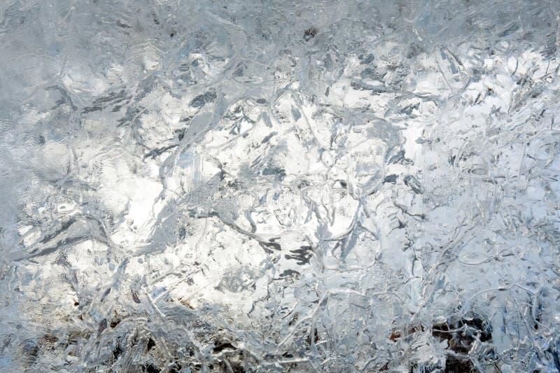 Is- genomskinligt kvarter av is med modeller arkivbilder