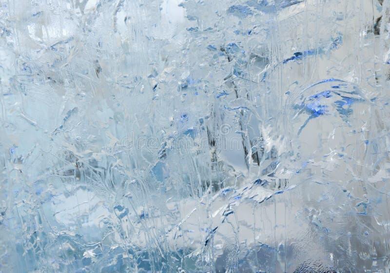 Is- genomskinligt kvarter av is med modeller royaltyfri fotografi