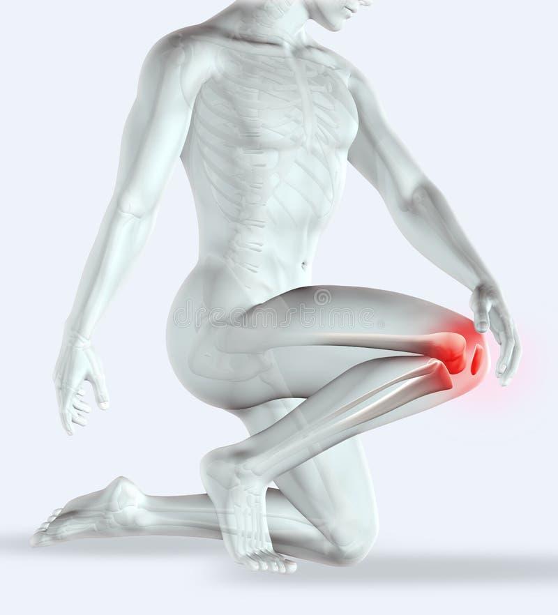genou 3D se tenant masculin en douleur illustration de vecteur