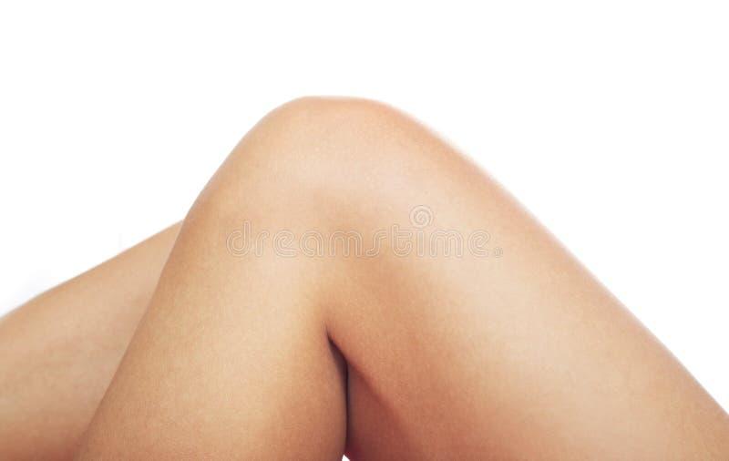 genou humain photos stock