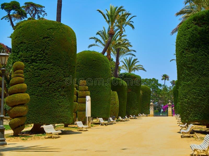 Genoves parkerar, botaniska trädgården av Cadiz, Spanien royaltyfria foton