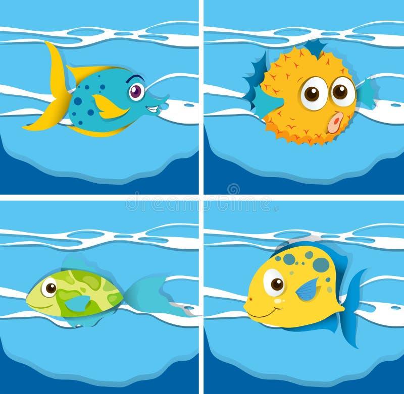 Genre différent de poissons illustration stock