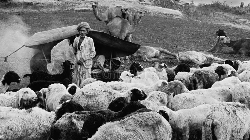 Gens de nomade en Inde images stock