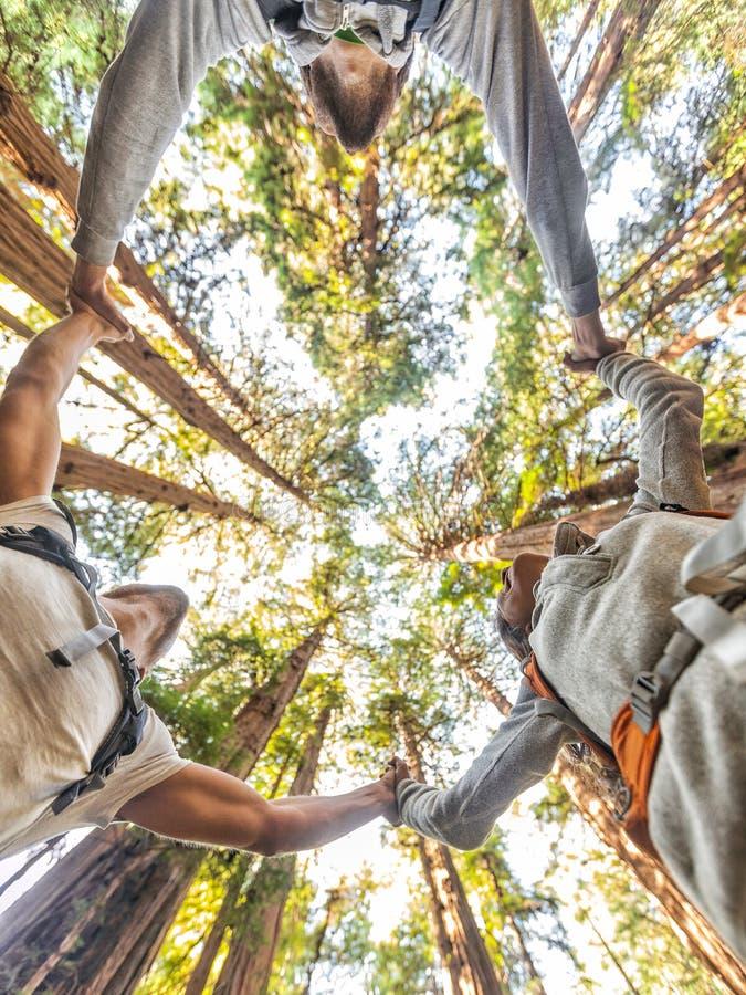 Gente del grupo de los amigos del bosque de la naturaleza que lleva a cabo las manos fotos de archivo libres de regalías