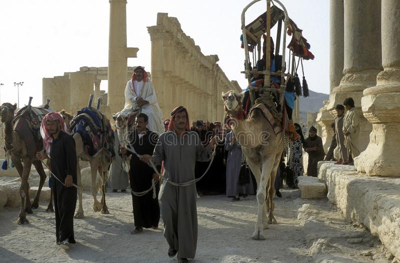 Download GENTE DEL PALMYRA DE ORIENTE MEDIO SIRIA Foto de archivo editorial - Imagen de arabia, tradición: 64203678