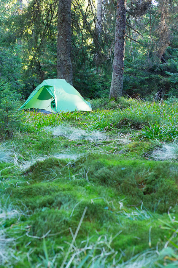 Gente di campeggio che mette sull'escursione delle scarpe dalla tenda immagini stock libere da diritti