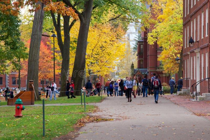 Gente en la yarda de Harvard imagen de archivo libre de regalías