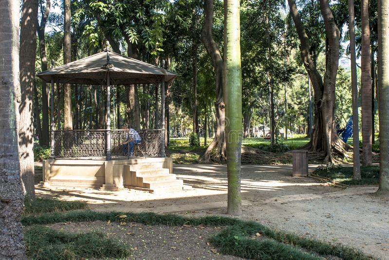 Gente en Luz Public Park en los centros de la ciudad Sao Paulo Éste es el primer parque público de la ciudad imagen de archivo