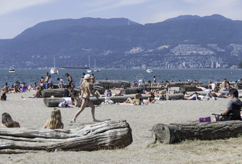 Gente joven que se relaja en la playa de Kitsilano en Vancouver, Columbia Británica/Canadá fotos de archivo libres de regalías