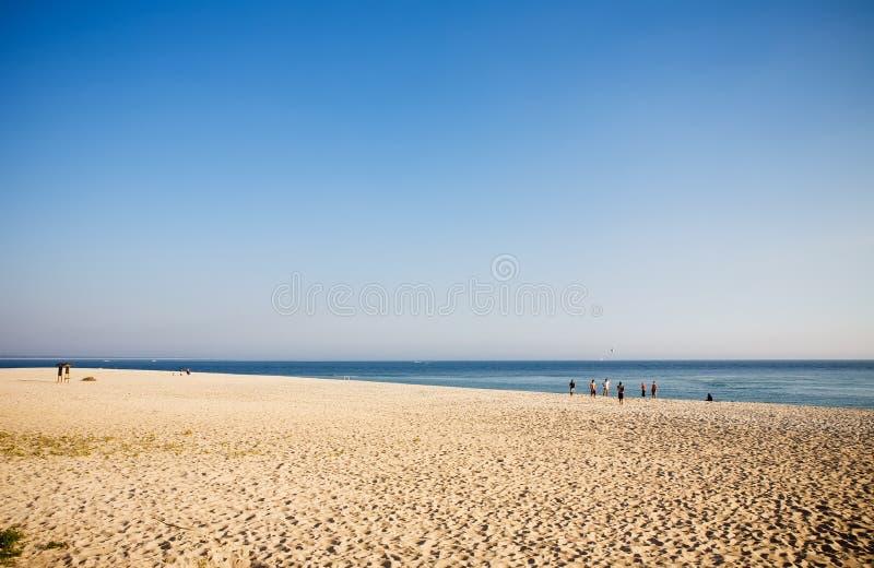 Download Gente Juguetona En Una Playa Imagen de archivo - Imagen: 8330761
