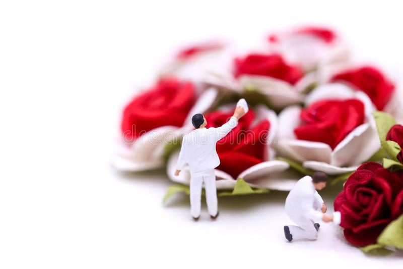 Gente miniatura: Combine al trabajador con las rosas rojas y las rosas blancas encendido imágenes de archivo libres de regalías