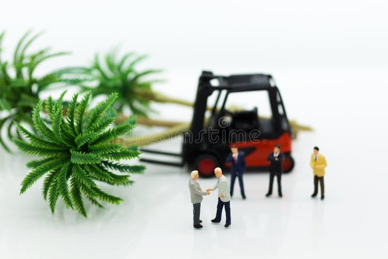 Gente miniatura: Los hombres de negocios hacen acuerdos en la silvicultura El uso de la imagen para se aprovecha del árbol, conce imágenes de archivo libres de regalías