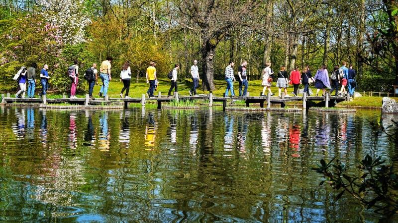 Gente que camina sobre piedras en cuerpo del agua en el jardín del keukenhof, Lisse Países Bajos