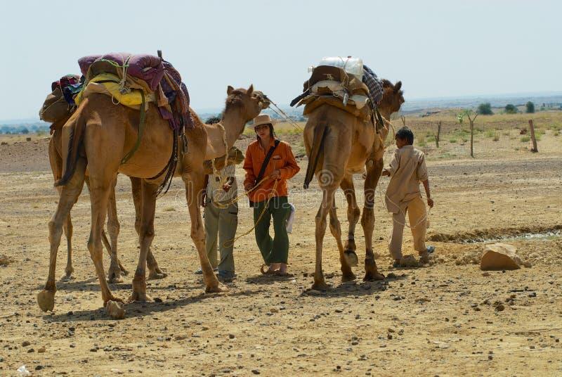 Gente que consigue camellos listos para un paseo del safari en el desierto cerca de Jodhpur, la India fotografía de archivo libre de regalías