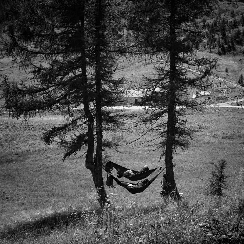 Gente que disfruta de la naturaleza en hamacas imagenes de archivo
