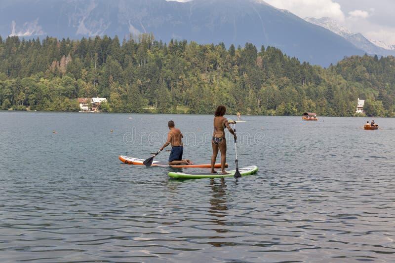 Gente que disfruta del embarque de pie de la paleta en el lago sangrado, Eslovenia imagenes de archivo