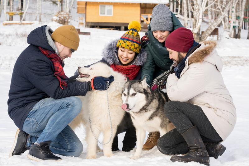 Gente que juega con los perros el vacaciones imagenes de archivo