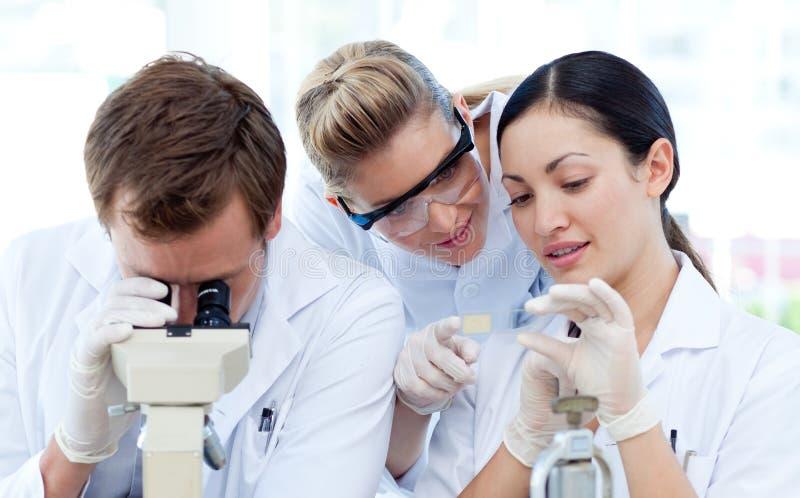 Gente que mira bajo un microscopio fotos de archivo