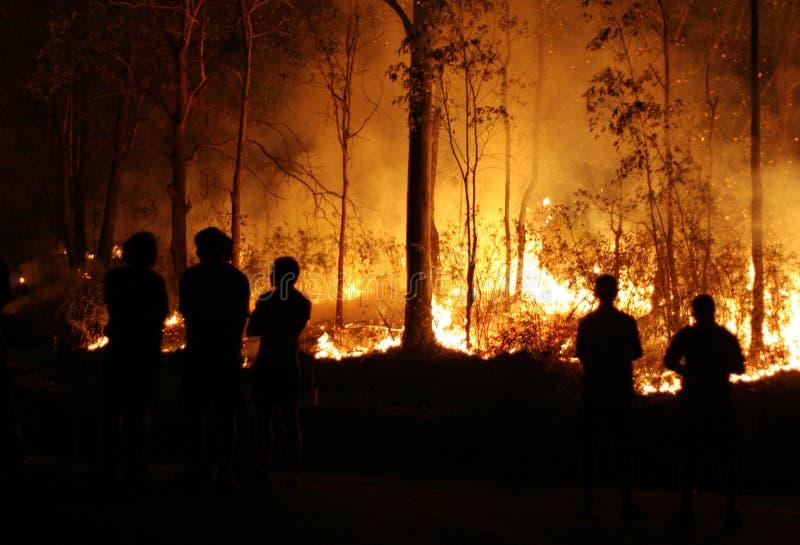 Gente que mira Bushfire imágenes de archivo libres de regalías