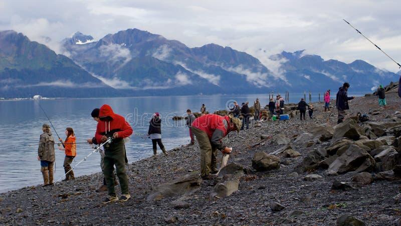 Gente que pesca salmones en bahía de la resurrección en Seward fotografía de archivo libre de regalías