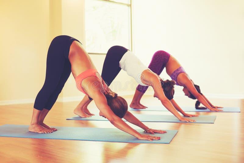 Gente que practica actitud hacia abajo del perro en clase de la yoga foto de archivo libre de regalías
