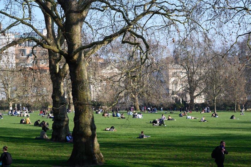 Gente que se sienta en Green Park en Londres en el tiempo de primavera, fotografía de archivo