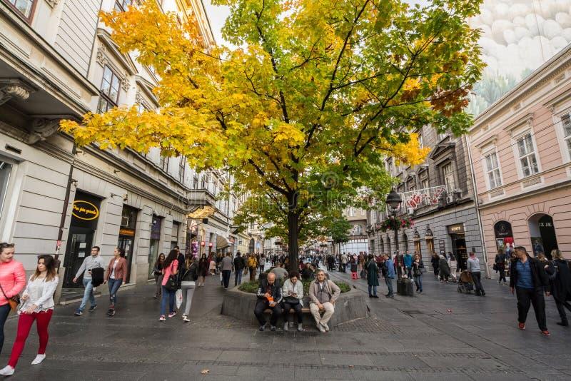 Gente que tiene una rotura en un banco bajo colores de un otoño del árbol que llevan en Kneza Mihailova, la calle peatonal princi fotos de archivo libres de regalías