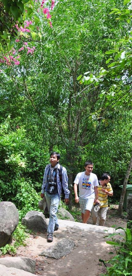 Gente que viaja en bosque fotos de archivo