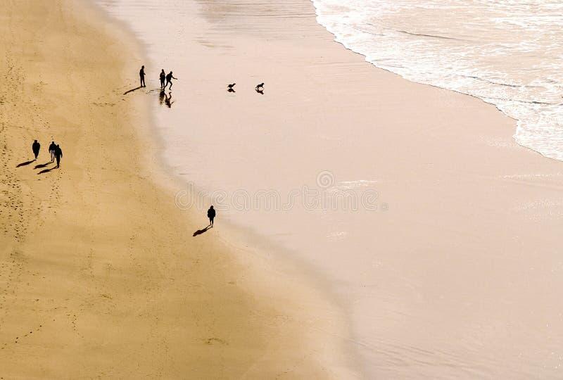 Gente silueteada que juega con un perro en la playa imagenes de archivo
