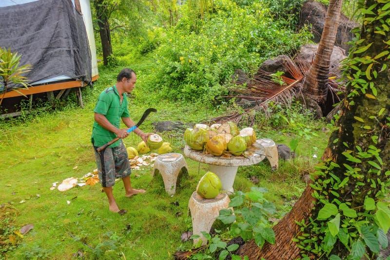 Gente tailandesa Unacquainted que corta y que vende el coco en Koh Wai Trat Thailand, concepto del d?a de fiesta de Tailandia fotografía de archivo