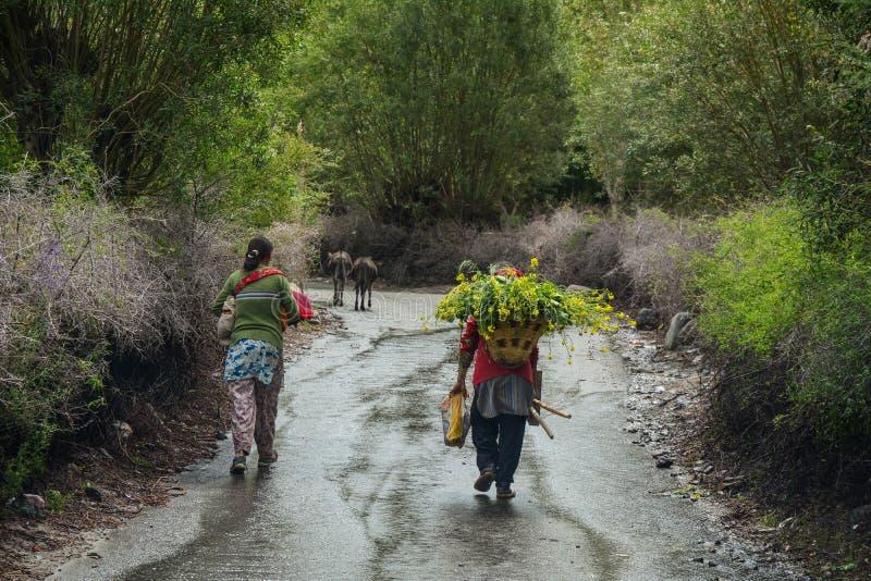 Gente tibetana que camina en el camino rural fotos de archivo libres de regalías
