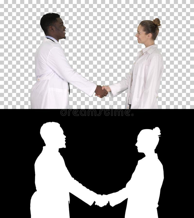 Gentil de vous rencontrer médecins pour rencontrer et se serrer la main, Alpha Channel image stock