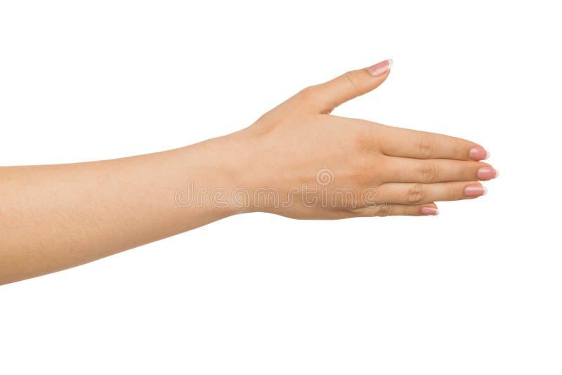 Gentil de vous rencontrer, main de femme avec le geste de salutation photo libre de droits