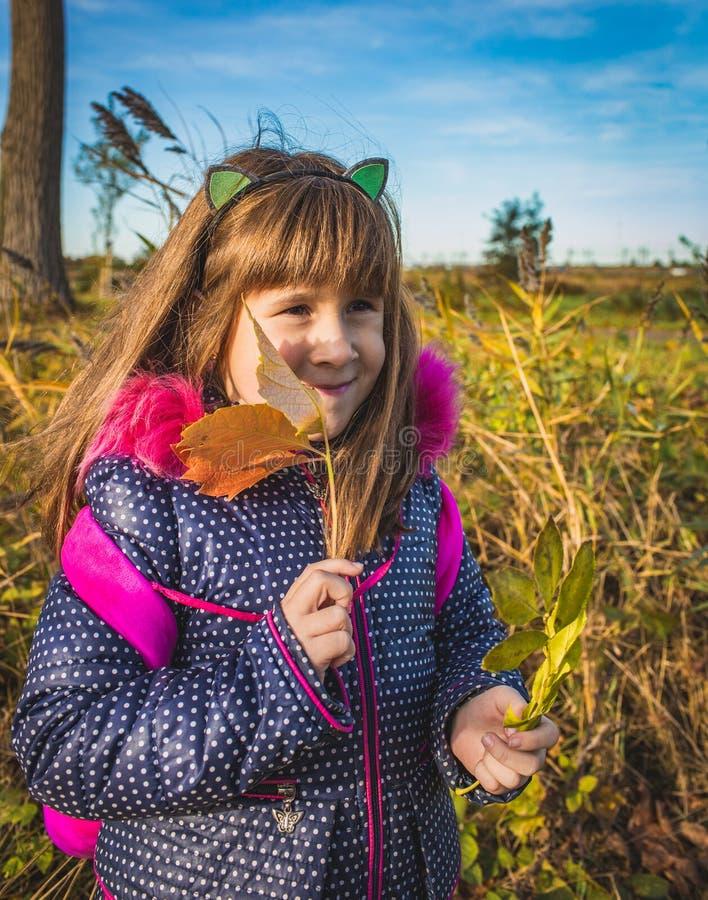 Gentille petite fille avec des feuilles d'automne à la lumière de crépuscule image stock