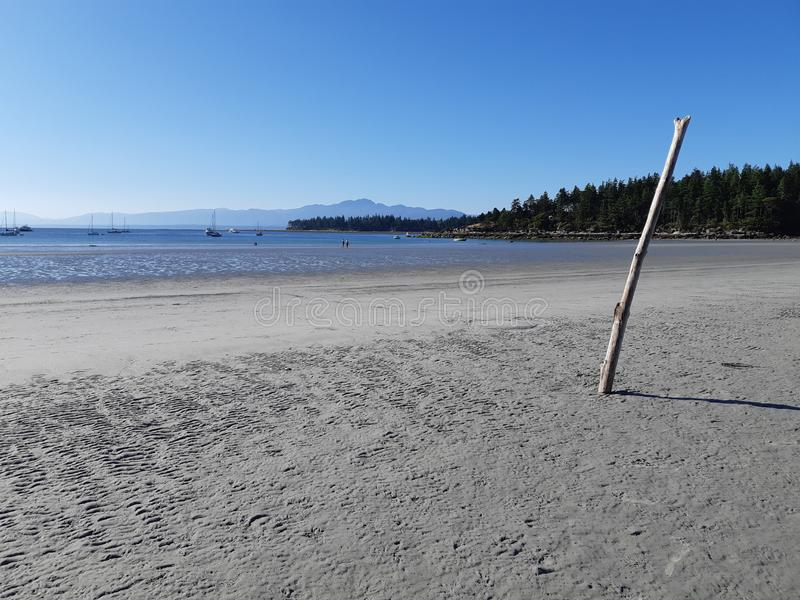 Gentle breeze on Tribune beach bay on Hornby island. White sandy beach with crystal and clear water at Tribune bay on Hornby island,  that earned its nickname as royalty free stock photo