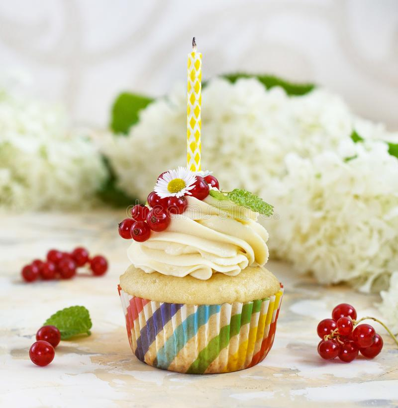 Gentle cupcake with cream and berries nd a candle a light background stock image