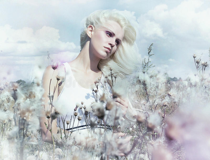 Gentle girl in the lush flowering field. Marvellous scenery - young tranquil attractive woman with blond hair in a lush blooming meadow royalty free stock images