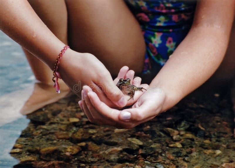 Gentle Hands Stock Image