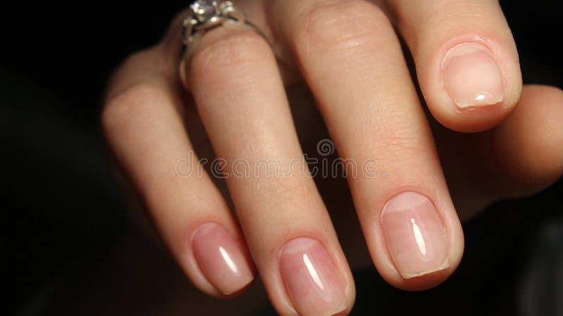 Gentle hands natural nails stock image. Image of finger - 107030023