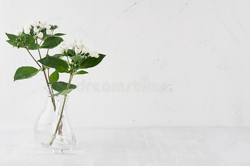 Gentle minimalist bouquet in exquisite transparent vase with white small flowers and green leaves on white shelf. royalty free stock images