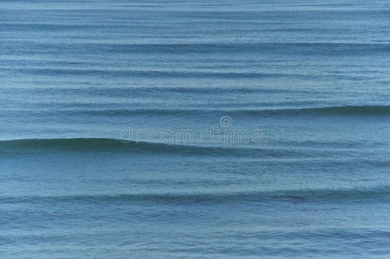 Download Gentle Pacific waves stock image. Image of coast, pacific - 30788293