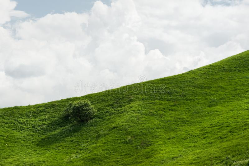 A gentle slope of a green hill with rare trees and lush grass against a blue sky with clouds. The Sonoma Valley stock images