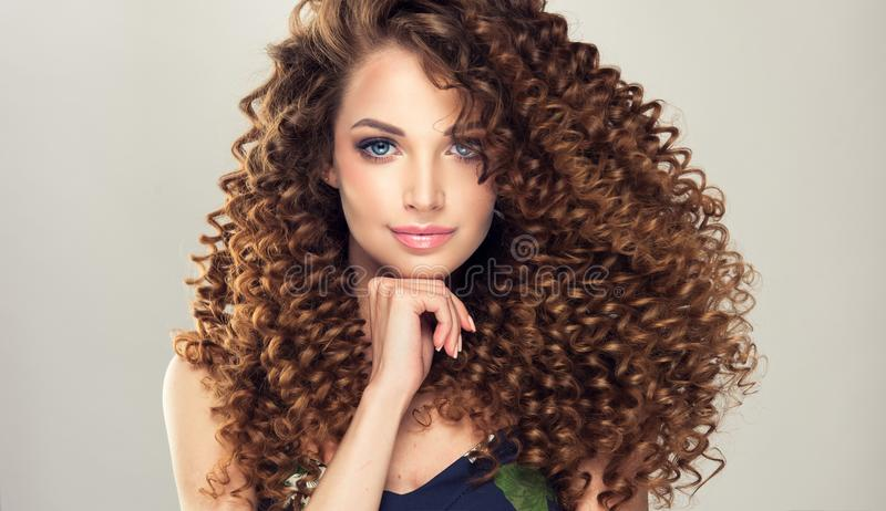 Young, brown haired woman with dense,elastic curls in a hairstyle. Gentle smile on the face of flawless young girl, vivid makeup and dense, curly hairstyle stock images