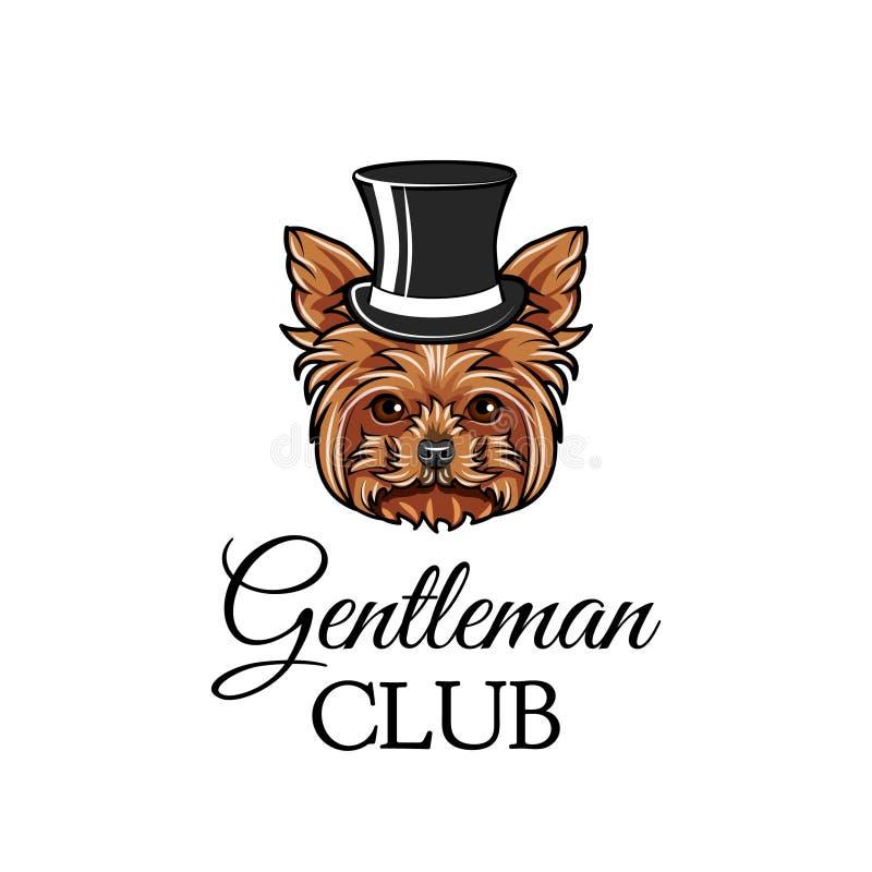 Gentleman för hund för Yorkshire terrier Bästa hatt Gentlemanklubbatext Yorkshire Terrier avel retro stående vektor stock illustrationer
